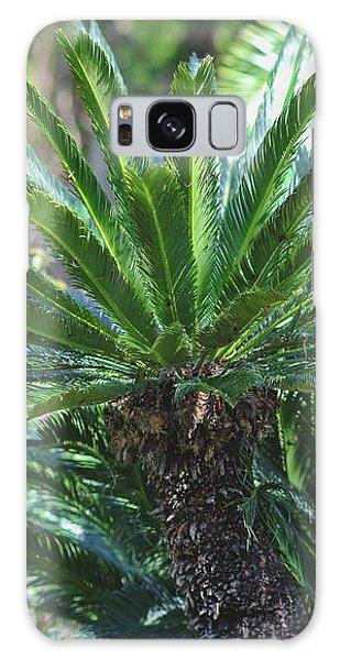 A Shady Palm Tree Galaxy Case