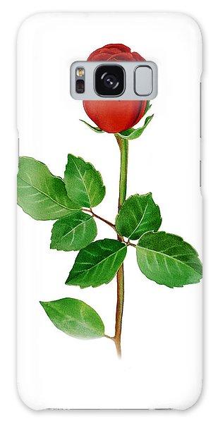 Hyper-realistic Galaxy Case - A Single Rose by Irina Sztukowski