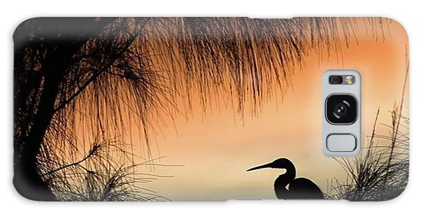 Galaxy Case - A Snowy Egret (egretta Thula) Settling by John Edwards