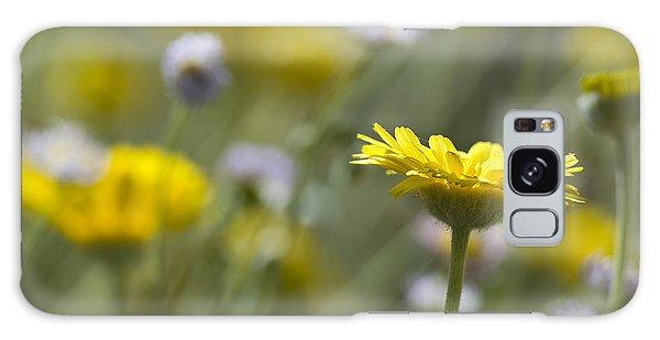 A Spring Daisy Galaxy Case by Sue Cullumber