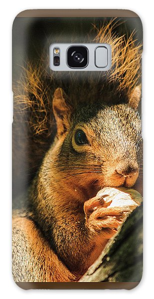 A Squirrel And His Nut Galaxy Case