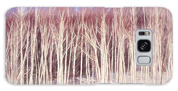A Stand Of White Birch Trees In Winter. Galaxy Case