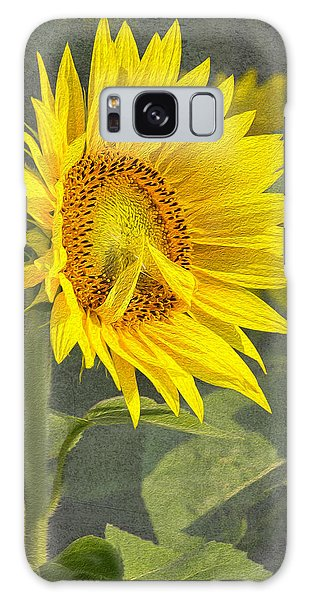 A Sunflower's Prayer Galaxy Case