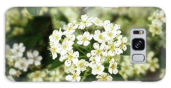 A Thousand Blossoms 3x2 Galaxy Case