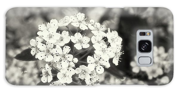 A Thousand Blossoms In Sepia 3x4 Flipped Galaxy Case