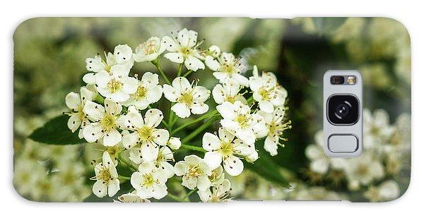 A Thousand Blossoms Galaxy Case
