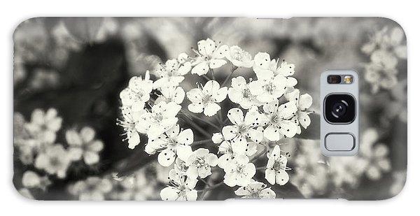 A Thousand Blossoms Sepia 3x2 Galaxy Case
