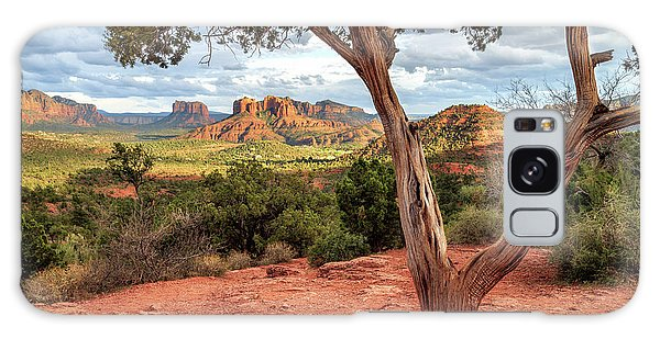 A Tree In Sedona Galaxy Case