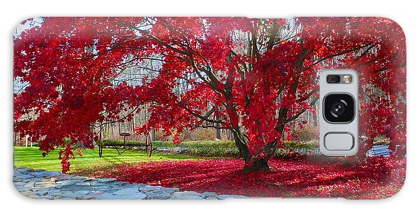 A Tree's Red Skirt Galaxy Case