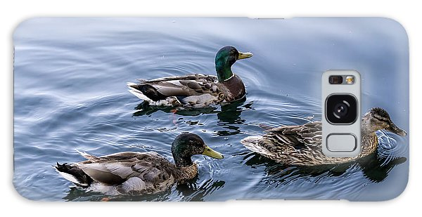 A Trio Of Mallards Galaxy Case