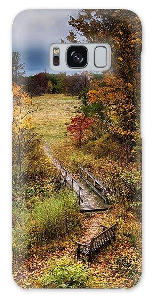 Beautiful Park Galaxy Case - A Walk In The Park I by Tom Mc Nemar