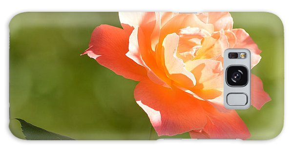 Galaxy Case featuring the photograph A Well Lighted Rose by AJ Schibig