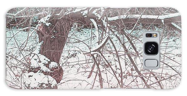 A Winter Tree Galaxy Case