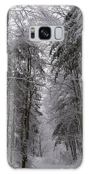 A Winters Path Galaxy Case