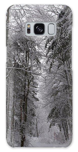 A Winters Path Galaxy Case