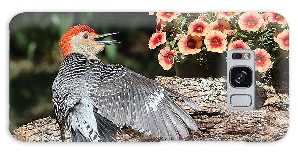 A Woodpecker Conversation Galaxy Case