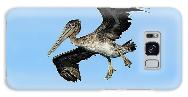 A Young Brown Pelican Flying Galaxy Case