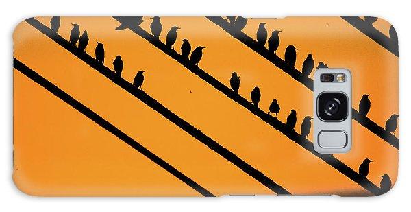 Aberystwyth Starlings At Dusk Galaxy Case