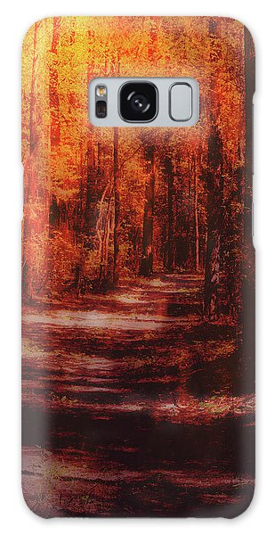 Abstract Path Galaxy Case