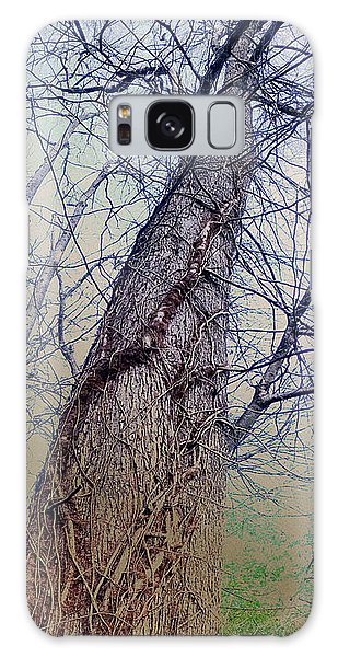 Abstract Tree Trunk Galaxy Case