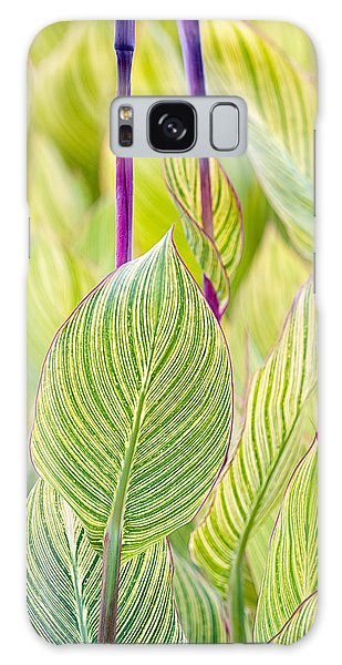 Abstracts In Nature Galaxy Case