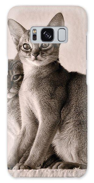 Abyssinian Kittens Galaxy Case