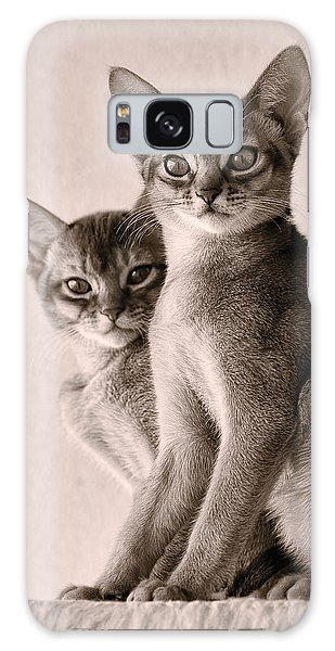 Abyssinian Kittens Galaxy Case