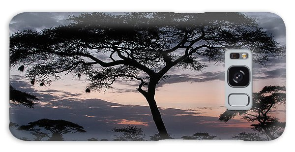 Acacia Trees Sunset Galaxy Case