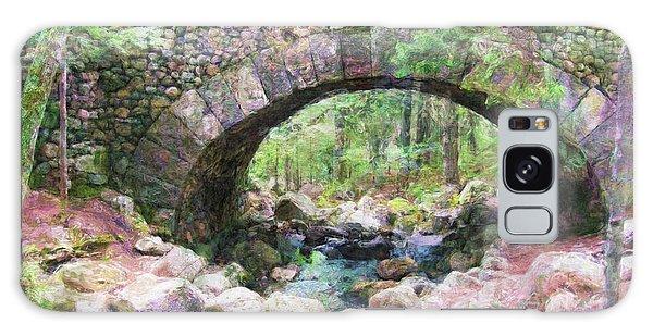 Acadia National Park - Cobblestone Bridge Abstract Galaxy Case