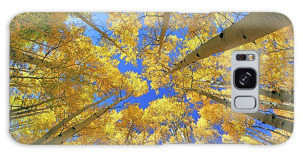 Galaxy Case featuring the photograph Admiring Aspens - Colorado - Autumn by Jason Politte