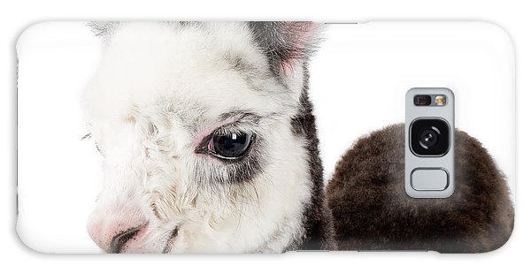 Adorable Baby Alpaca Cuteness Galaxy Case
