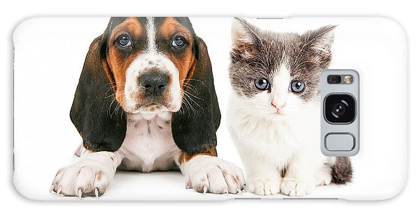 Adorable Basset Hound Puppy And Kitten Sitting Together Galaxy Case