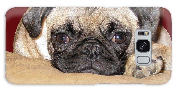 Adorable Icuddle Pug Puppy Galaxy Case