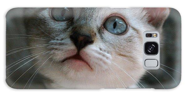 Adorable Kitty  Galaxy Case by Kim Henderson