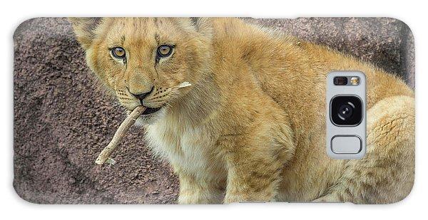 Adorable Lion Cub Galaxy Case