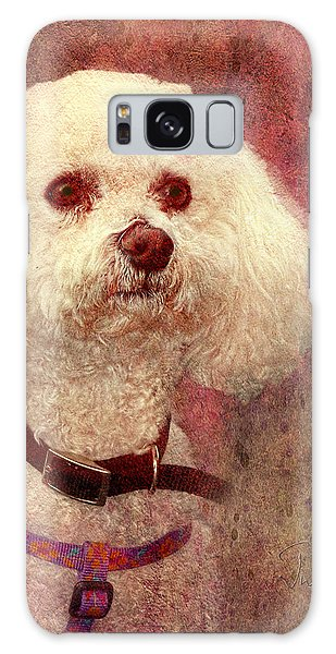 Adoration - Portrait Of A Bichon Frise  Galaxy Case