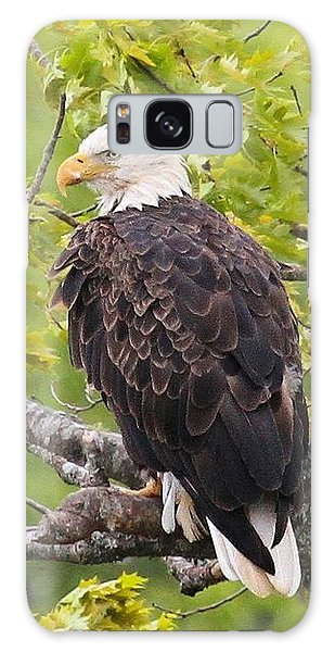 Adult Bald Eagle Galaxy Case