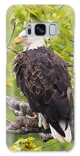 Adult Bald Eagle Galaxy Case
