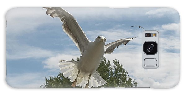 Adult Seagull In Flight Galaxy Case