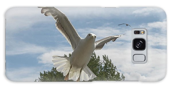 Adult Seagull In Flight Galaxy Case