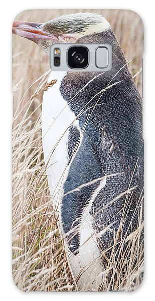 Adult Yellow-eyed Penguin 2 Galaxy Case