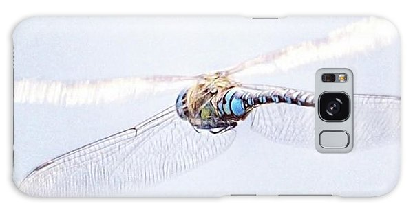 Galaxy Case - Aeshna Juncea - Common Hawker In by John Edwards