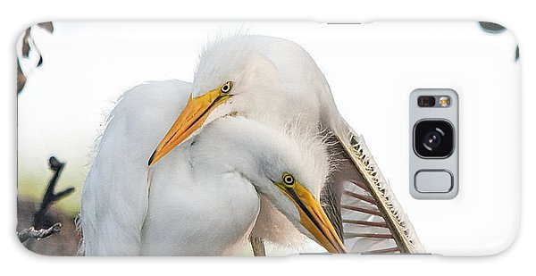 Egret Galaxy Case - Affectionate Chicks by Kenneth Albin