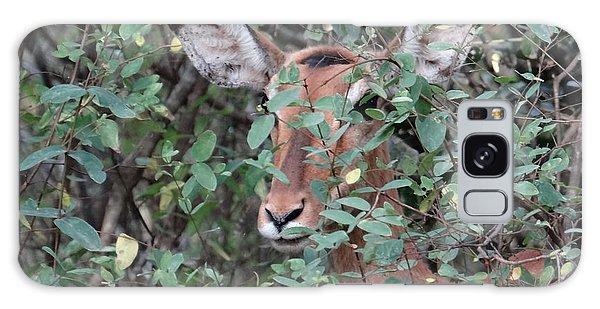 Exploramum Galaxy Case - Africa - Animals In The Wild 4 by Exploramum Exploramum