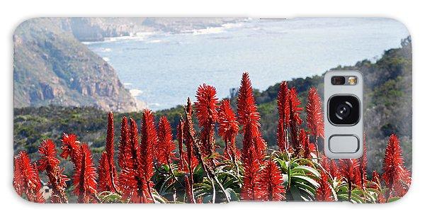 African Aloe And False Bay Galaxy Case