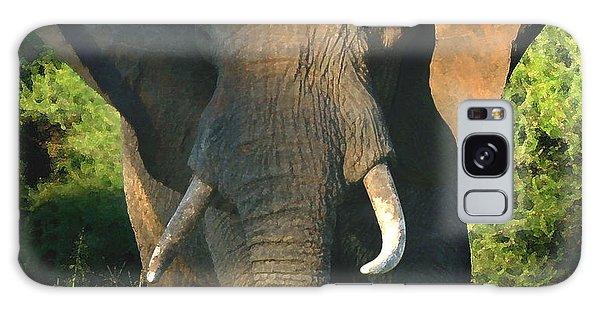 African Bull Elephant Galaxy Case