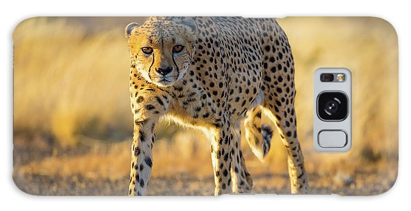 African Cheetah Galaxy Case by Inge Johnsson