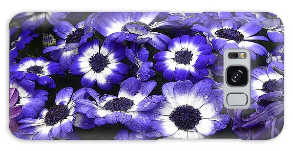 African Daisy Purple And White Galaxy Case by Dee Flouton