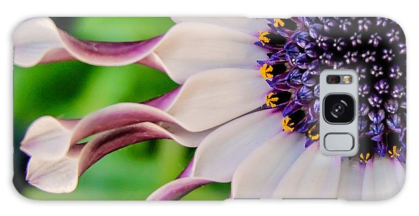 African Daisy Squared Galaxy Case by TK Goforth