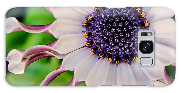 African Daisy Galaxy Case by TK Goforth